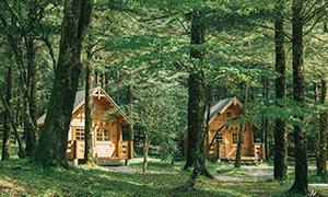 表富士グリーンキャンプ場(季節限定)